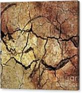 Rhinoceros From Chauve Cave Canvas Print