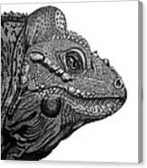 Rhinoceros Iguana Canvas Print