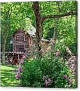 Rhododendron At Babcock Canvas Print