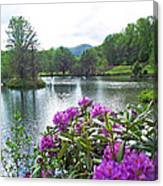Rhododendron Blossoms And Mountain Pond Canvas Print