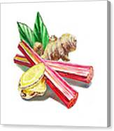 Rhubarb And Ginger Canvas Print