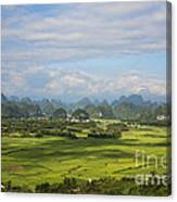 Rice Farming In China Canvas Print