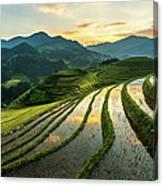 Rice Terraces At Mu Cang Chai, Vietnam Canvas Print