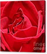 Rich Red Canvas Print