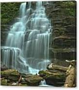 Ricketts Glen Cascading Falls Canvas Print