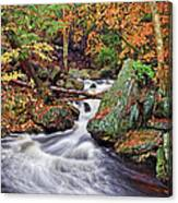 Ricketts Glen Falls Canvas Print