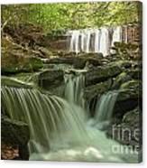 Ricketts Glen Waterfall Cascades Canvas Print