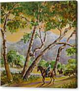 Riding Through Sprawling Sycamore Canvas Print