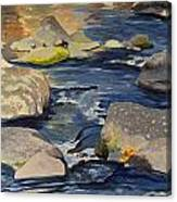 Riffle Canvas Print