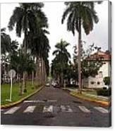 Right Side El Prado Sidewalk Canvas Print