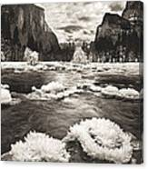 Rime Ice On The Merced In Black And White Canvas Print
