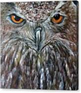 Rings Of Fire, Owl Canvas Print