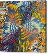 Rings Of Jasper Canvas Print