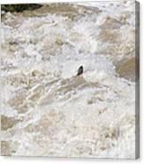 Rio Grande Kayaking Canvas Print