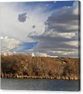 Riparian Zone Snake River Canvas Print