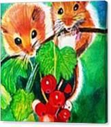 Ripe-n-ready Cherry Tomatoes Canvas Print