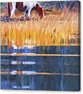 Rippled Reflection Canvas Print