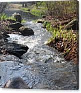 Rippleing Stream Canvas Print