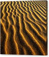 Ripples Oregon Dunes National Recreation Area Canvas Print