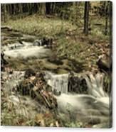 Ripplin' Waters Canvas Print