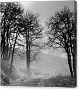 Rising Mists In The Bald Hills Canvas Print