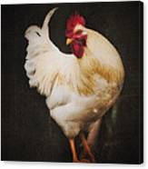 Rita's Rooster Canvas Print