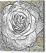 Ritzy Rose With Ink And Taupe Background Canvas Print