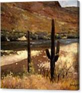 River And Cactus Canvas Print