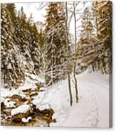 River And Path Canvas Print