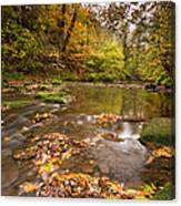 River Blyth In Autumn Vertical Canvas Print