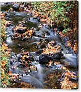 River Cascades Canvas Print