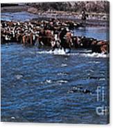 River Crossing Canvas Print