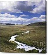 River In A Landscape Canvas Print