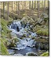 River In The Mountain Canvas Print