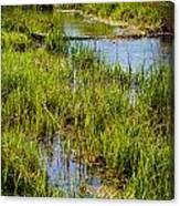 River Kennet Marshes Canvas Print