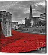 River Of Blood  Canvas Print