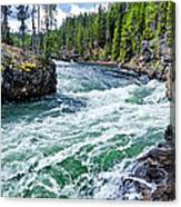 River Power Canvas Print
