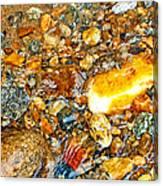 River Rocks 10 Canvas Print