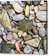 River Rocks 2 Canvas Print