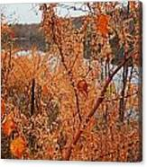 River Side Foliage Autumn Canvas Print