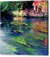 River Sile In Treviso Italy Canvas Print