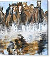 River Stampede Canvas Print