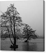 River Trees And Fog Canvas Print