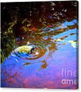 River Turtle Canvas Print