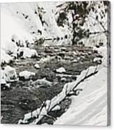 River Vertical Canvas Print