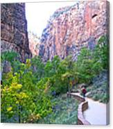 River Walk In Zion Canyon In Zion Np-ut Canvas Print