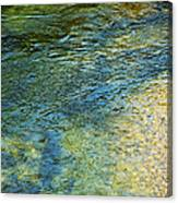 River Water 1 Canvas Print