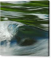 River Wave Canvas Print