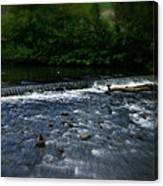 River Wye Waterfall - In Peak District - England Canvas Print