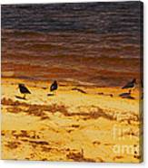 Riverbank Birds Canvas Print